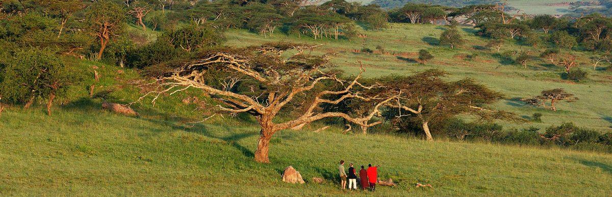 7-days-kenya-adventure-safari.jpg