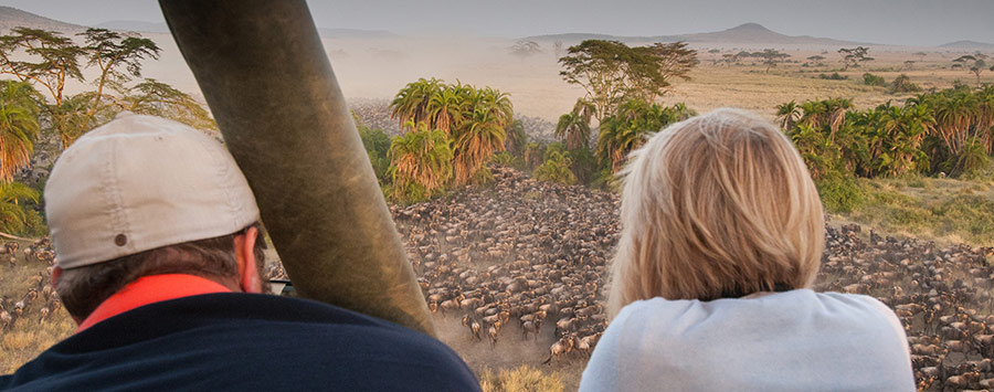 13 days Kenyan and Tanzania safaris