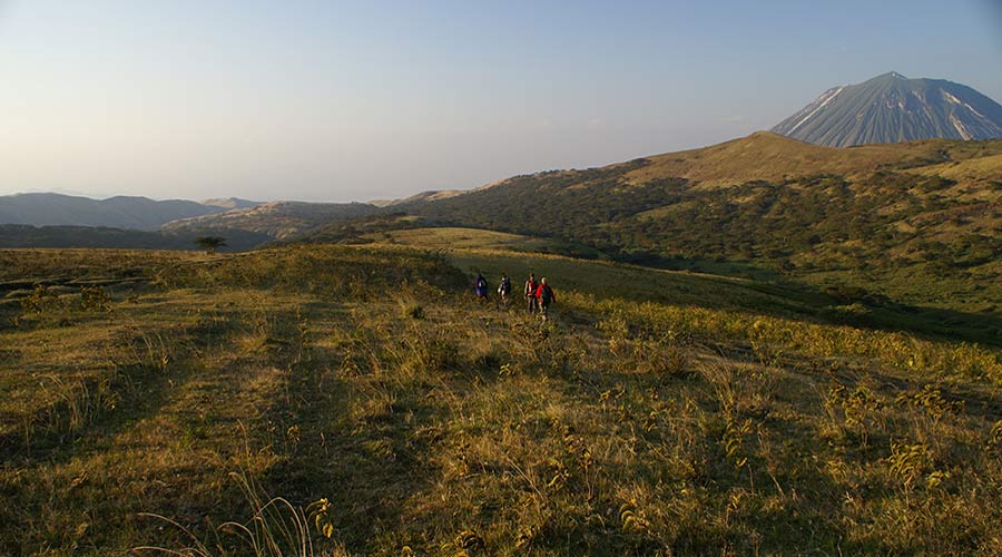 3 Days Ngorongoro Highland Trekking