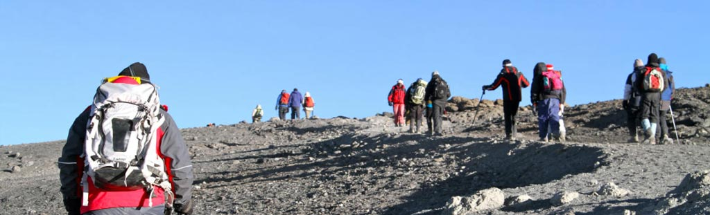 13days Kilimanjaro climb and Serengeti wildlife safari