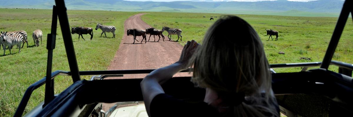 kenya-tanzania-safari.j