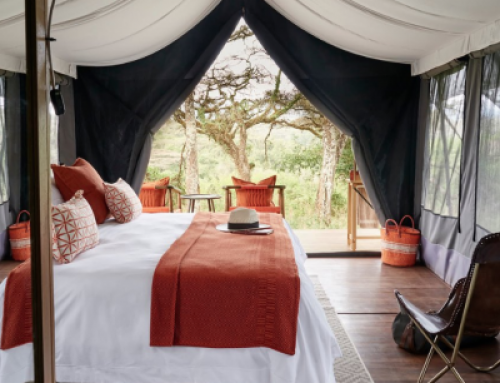Sanctuary Ngorongoro Camp