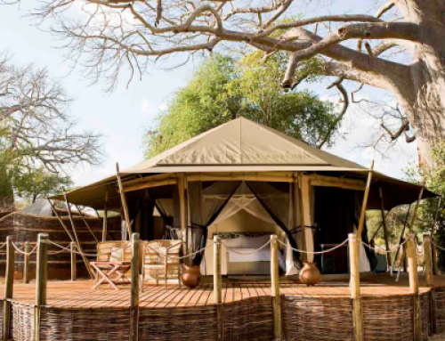 Swala Safari Camp