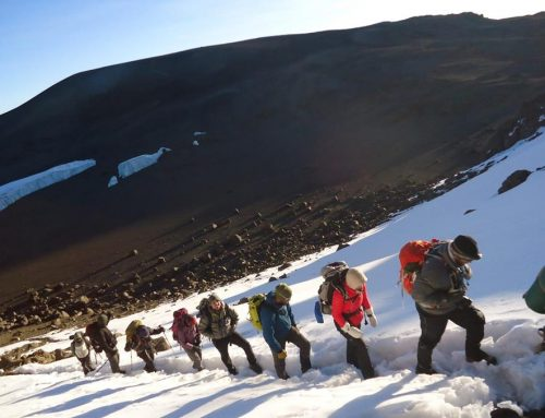 Kilimanjaro climb success rates