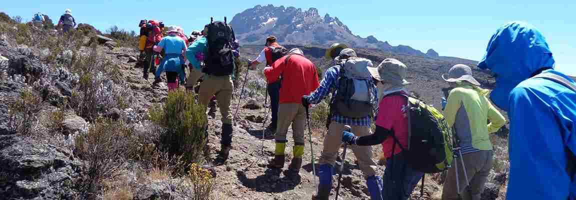 11 days kilimanjaro climb northern circuit