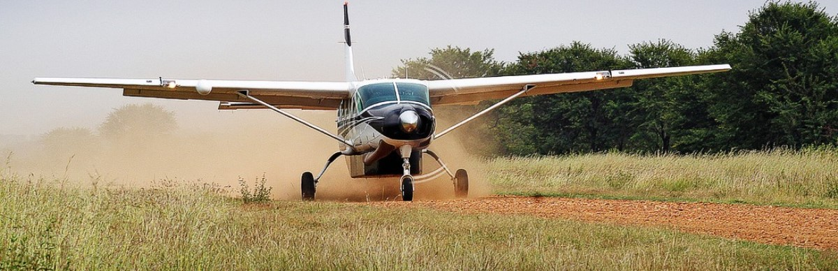 3-days-fly-in-selou-safari.jpg
