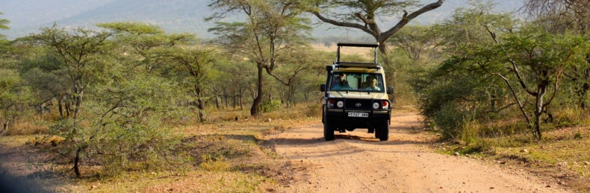 3-days-safari-mikumi-national-park.jpg