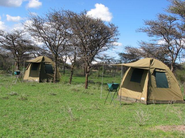 7-days-camping-safari.jpg