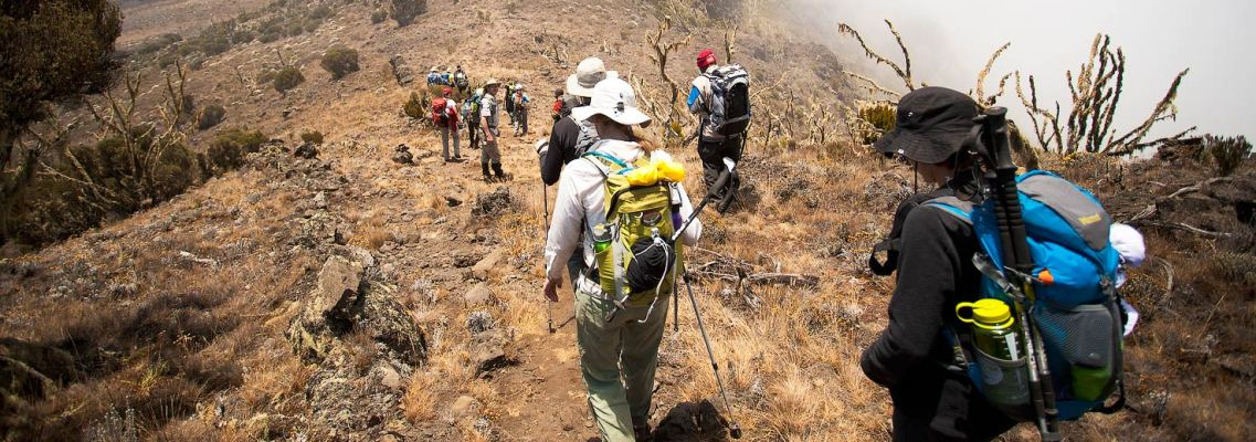 7-days-kilimanjaro-climb-shira-route.jpg