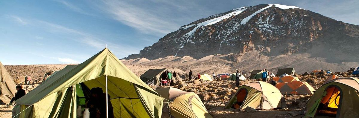 7 Days Kilimanjaro Climb Trekking Lemosho Route